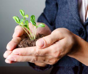 Het online pensioendossier mypension.be is er vanaf nu voor zowel werknemers, zelfstandigen als ambtenaren.
